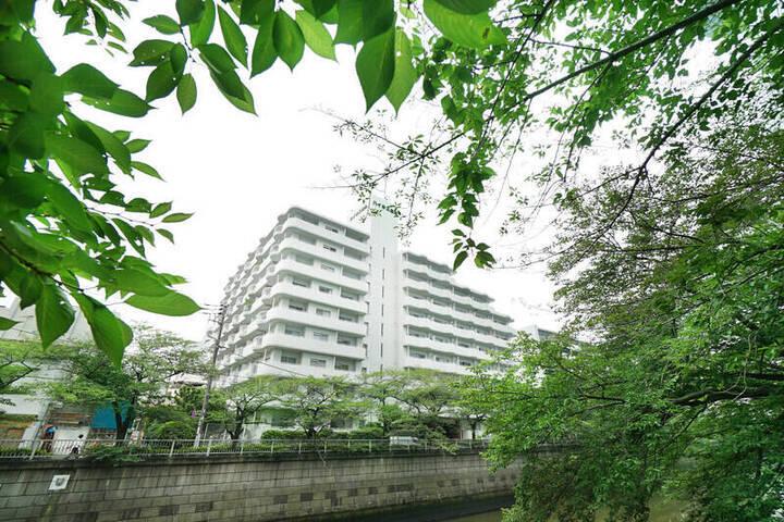 目黒駅 / 1LDK / 42.75㎡
